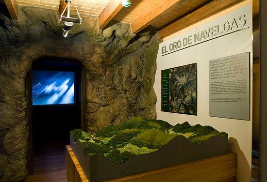 Moa Museo del Oro de Asturias