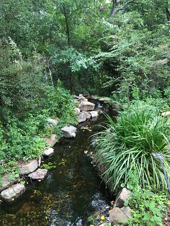 Creek running through the park - Picture of Grapevine Botanical ...