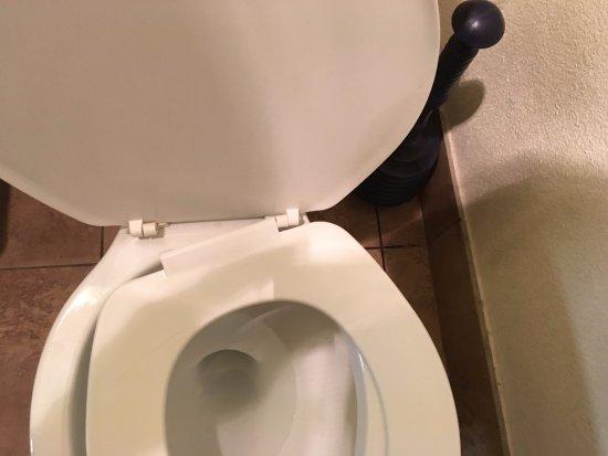 Howard Johnson Inn Flagstaff University West: broken toilet seat
