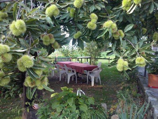 Sulzano, อิตาลี: Il Toscano Bar-Trattoria