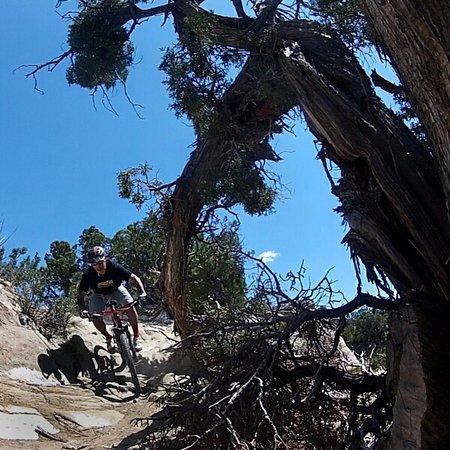 Fruita, CO: World class mountain biking at 18 Road on Sarlacc