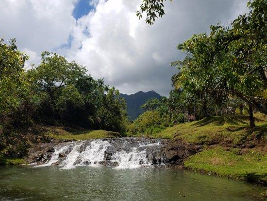 Kilauea, Hawaï: Silver Falls