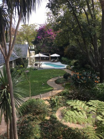 Rivonia, Sudáfrica: Leaves Guest House garden and pool