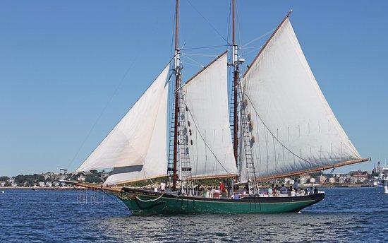 Schooner Thomas E. Lannon: Beautiful Sail in Gloucester Harbor