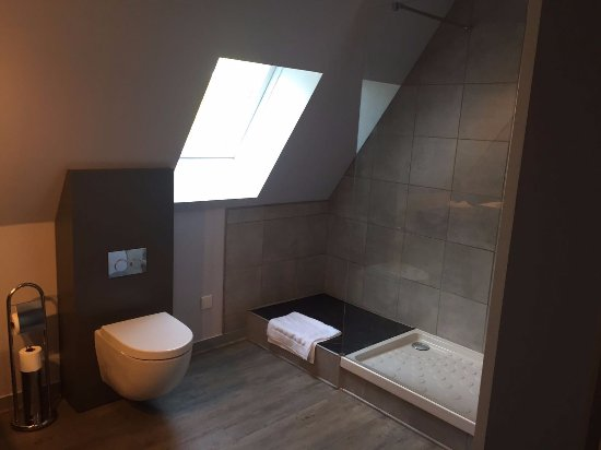 Tessy-sur-Vire, Fransa: Amazing bathroom