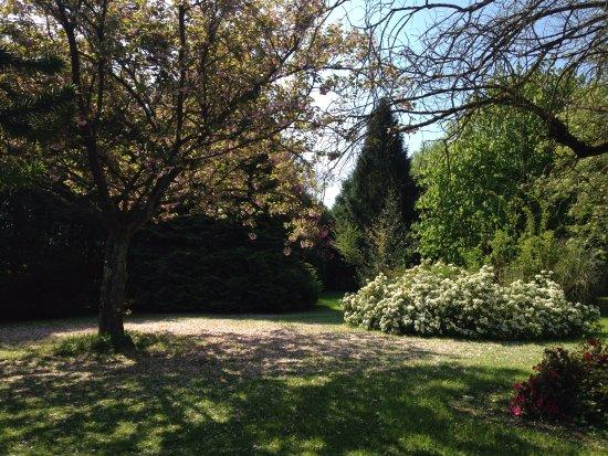 Tessy-sur-Vire, Fransa: Beautiful garden