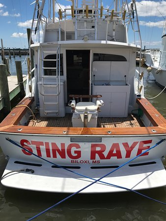 Sting Raye Fishing Charters, LLC.