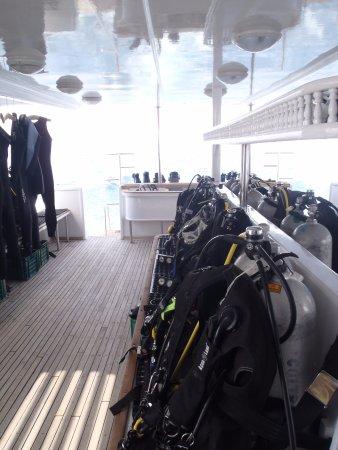Blue Paradise Diving Center: Netjes he