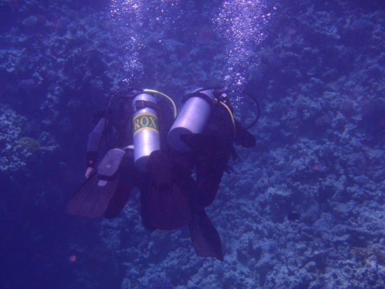 Blue Paradise Diving Center: Lekker rustig