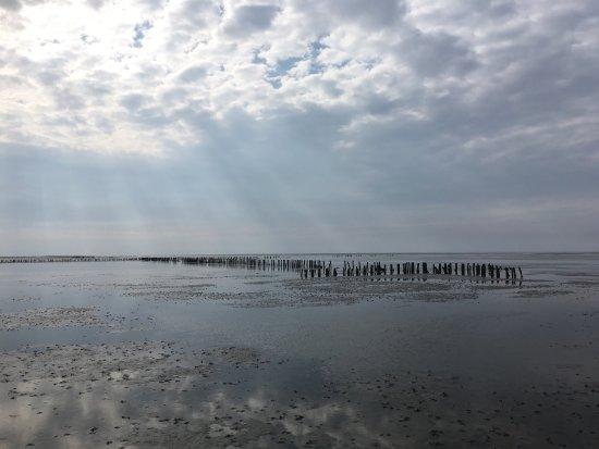 Pieterburen, Нидерланды: Zwerftocht in mei