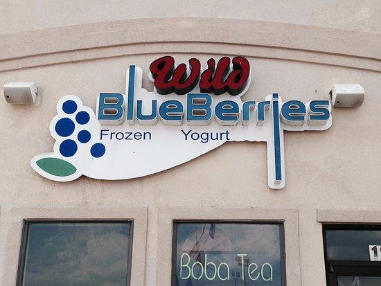 Wild Blueberries Frozen Yogurt and Boba Tea - Picture of