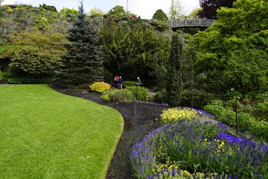 Queen Elizabeth Park: photo2.jpg