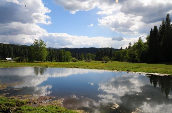 Quincy, Califórnia: Pond and sky at Greenhorn Ranch