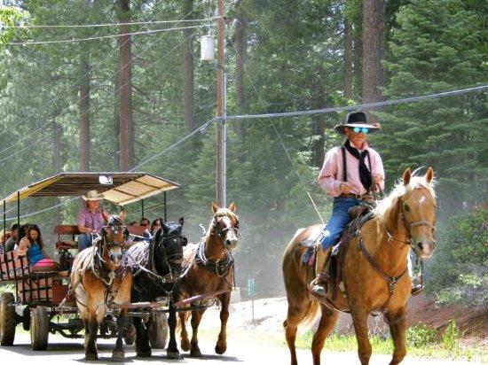 Quincy, Califórnia: Wagon rides