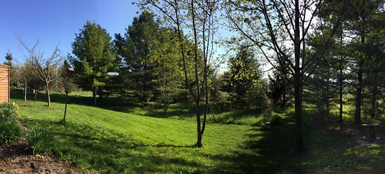 Door County Cottages: The grassy area outside of Elise