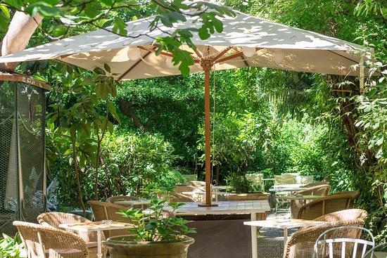 Hotel Windsor Nice: jardin