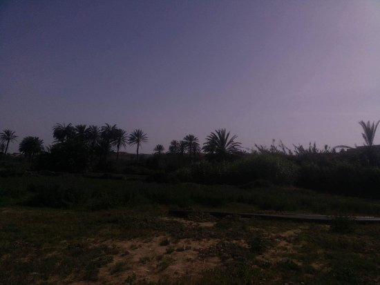 Souss-Massa-Draa Region照片