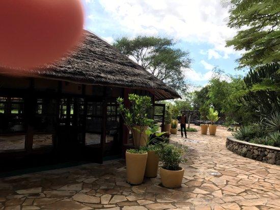 Kia Lodge – Kilimanjaro Airport: photo1.jpg