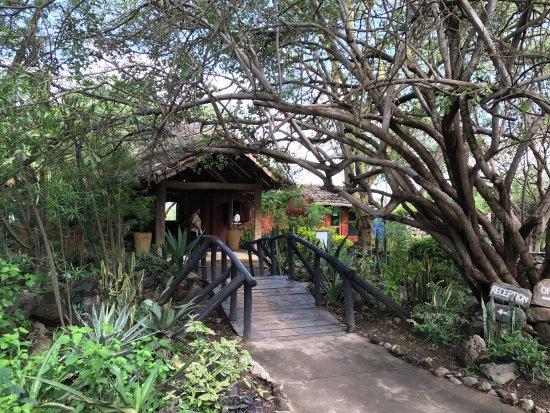 Kia Lodge – Kilimanjaro Airport: photo3.jpg