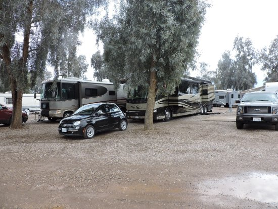 Mohave Valley, Аризона: Moon River RV Resort