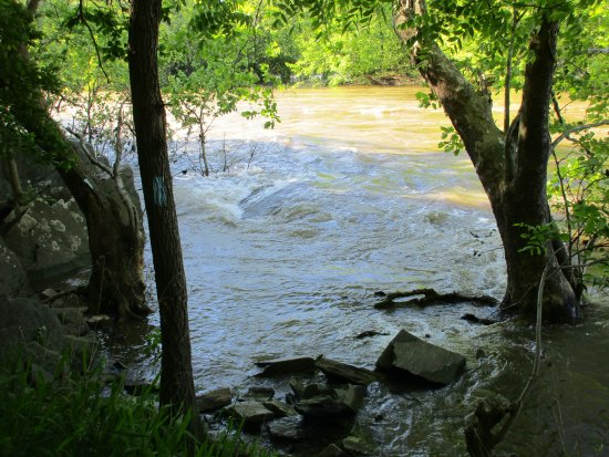 Potomac, MD: the river was overflowing