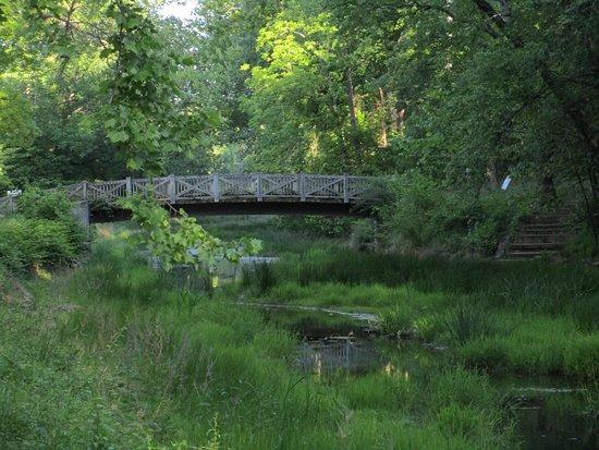 Potomac, MD: a bridge over the C&O Canal
