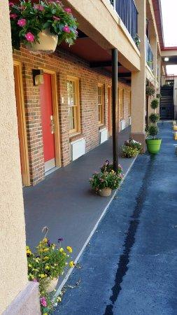 Walterboro, SC: Flowers line the walkway