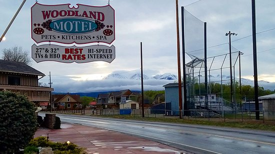 Woodland Motel: What a view!