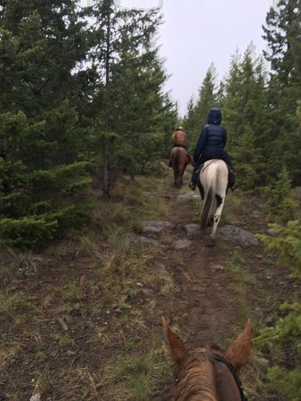 Clinton, Canada: Horse riding