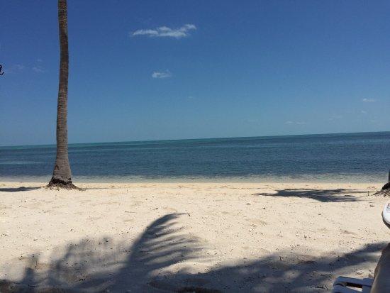 West End, Grand Bahama Island: photo5.jpg