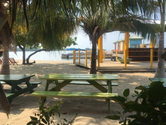 The Shak Beach Cafe: photo1.jpg