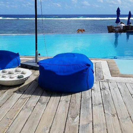Arorangi, Cook Islands: IMG_20170509_050618_509_large.jpg