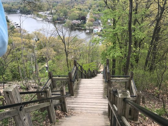 Saugatuck, MI: View from the top