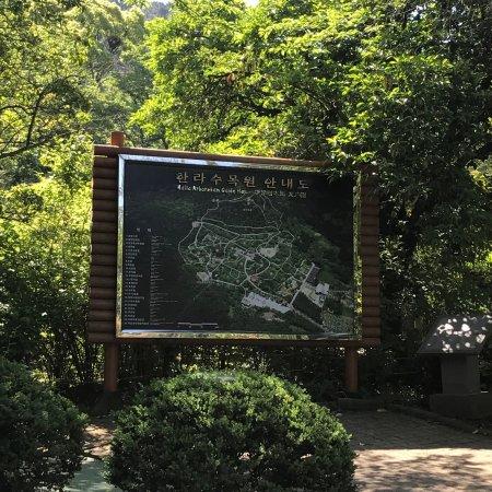 Halla Arboretum: photo6.jpg
