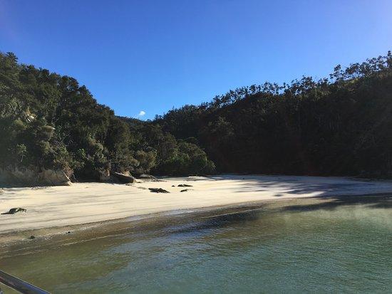 Abel Tasman National Park, Nueva Zelanda: Torrent Bay