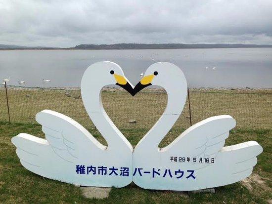 Wakkanai, Japan: 大沼バードハウス