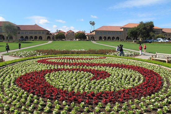 Palo Alto, Kalifornia: Stanford S in flowers
