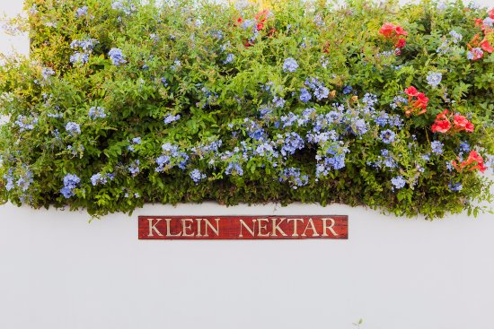 Klein Nektar Wine & Olive Estate