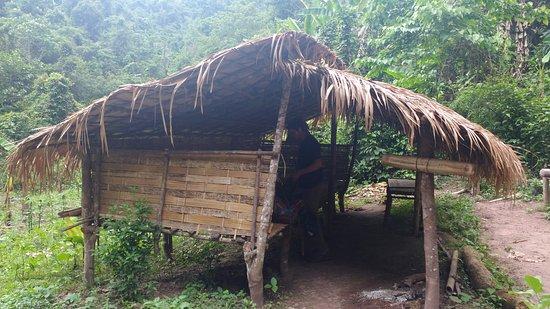 Luang Namtha, Laos: Our jungle camp