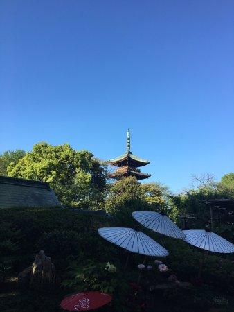 Toshogu Shrine: photo8.jpg