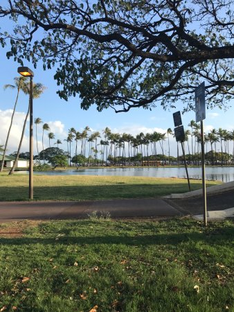 Ala Moana Beach Park : walking through park