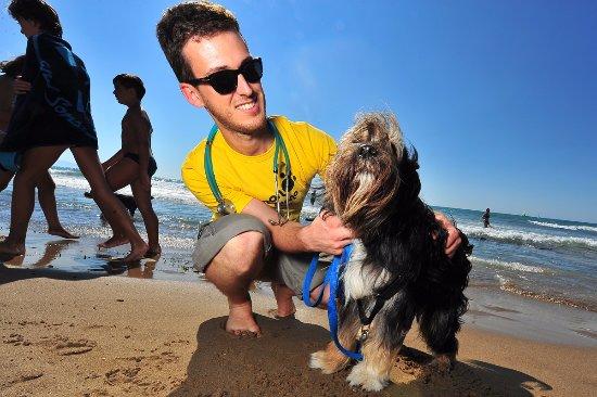 Dog Beach: Il veterinario presente la Domenica