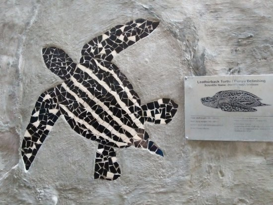 Kampung China (Chinatown): the extinct leatherback turtle at terengganu beach, info at turtle alley