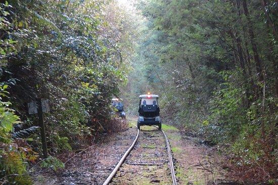 Taumarunui, Nowa Zelandia: Wagon train through the bush.