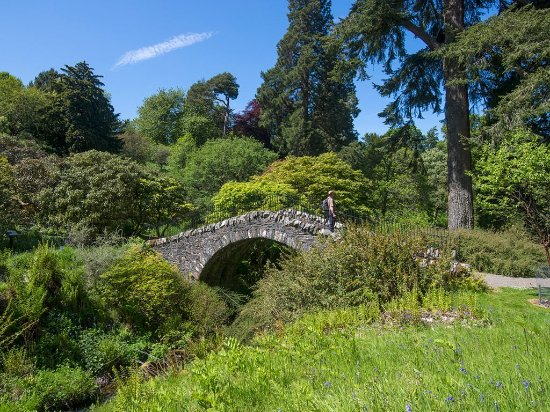 Peebles, UK: The Swiss Bridge at Dawyck Botanic Garden