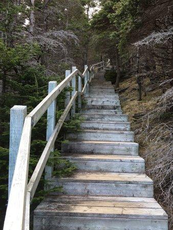 Placentia, Canada: photo3.jpg