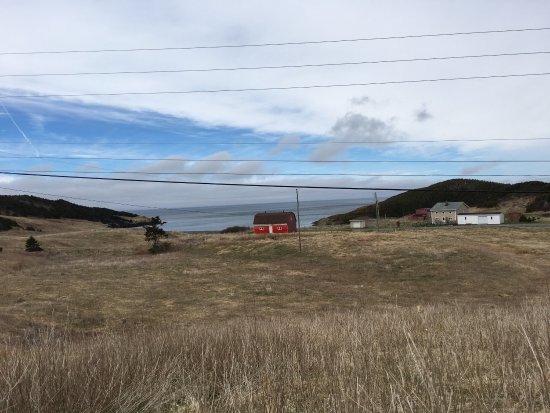 Placentia, Canada: photo4.jpg