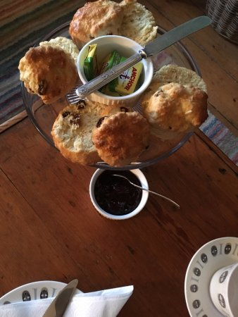 Llanfair, UK: Complimentary home-made 'welcome' scones - a lovely surprise!