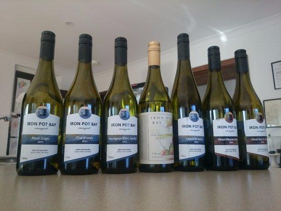 Launceston, Australia: Iron Pot Bay wines