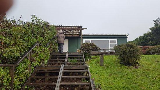 Paraparaumu, Nova Zelândia: 20170517_114023_large.jpg